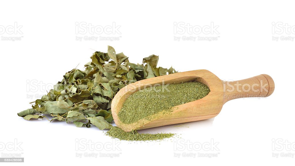 Dried Moringa leaf and powder - medicinal plant stock photo