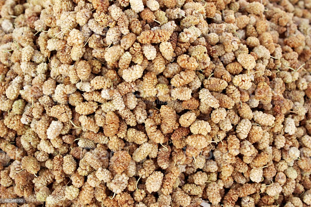 Dried Mulberry stock photo