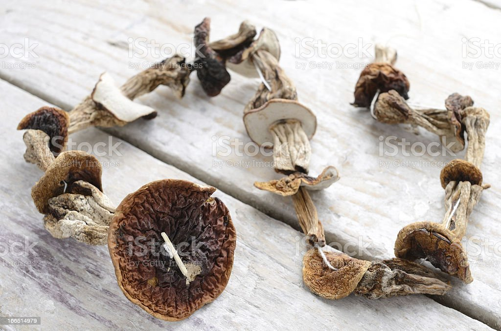 Dried mushrooms bunch over wooden background royalty-free stock photo