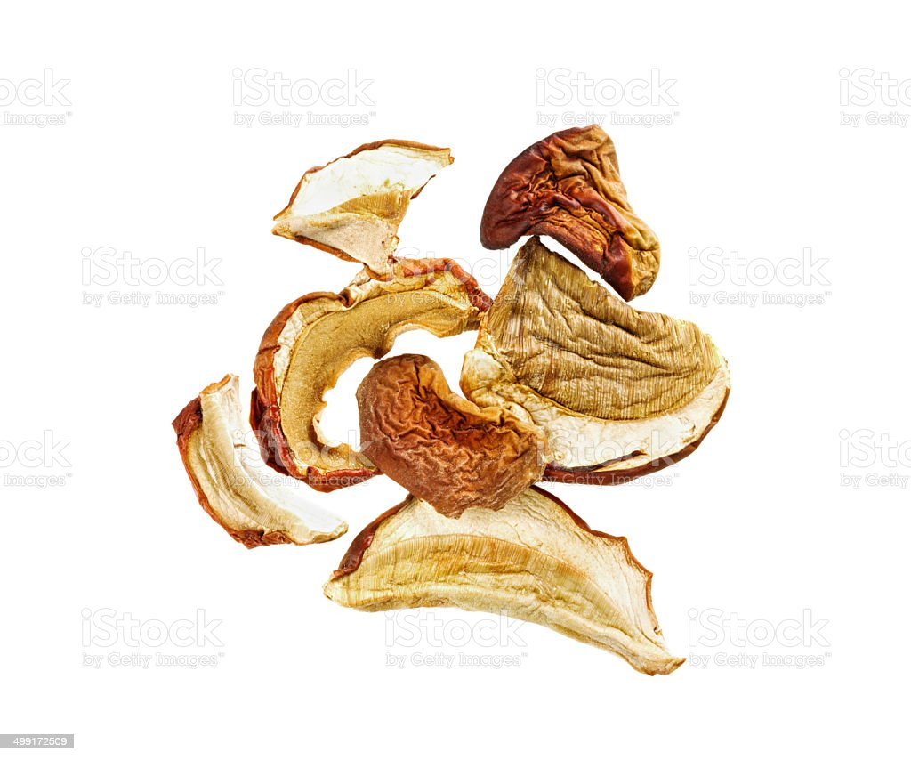 dried mushrooms isolated stock photo