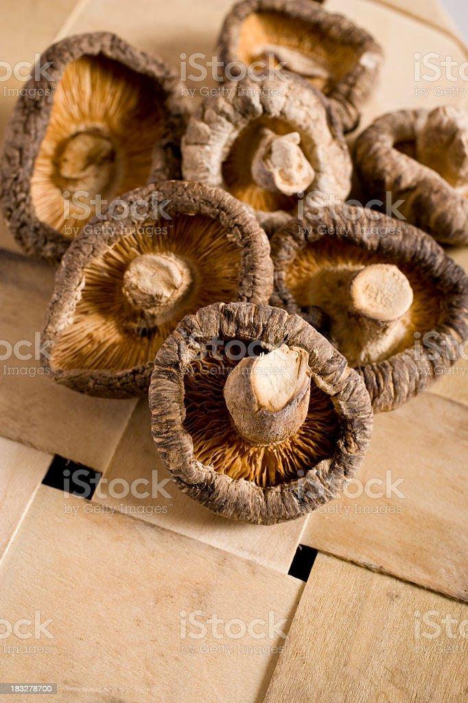 Dried mushrooms royalty-free stock photo