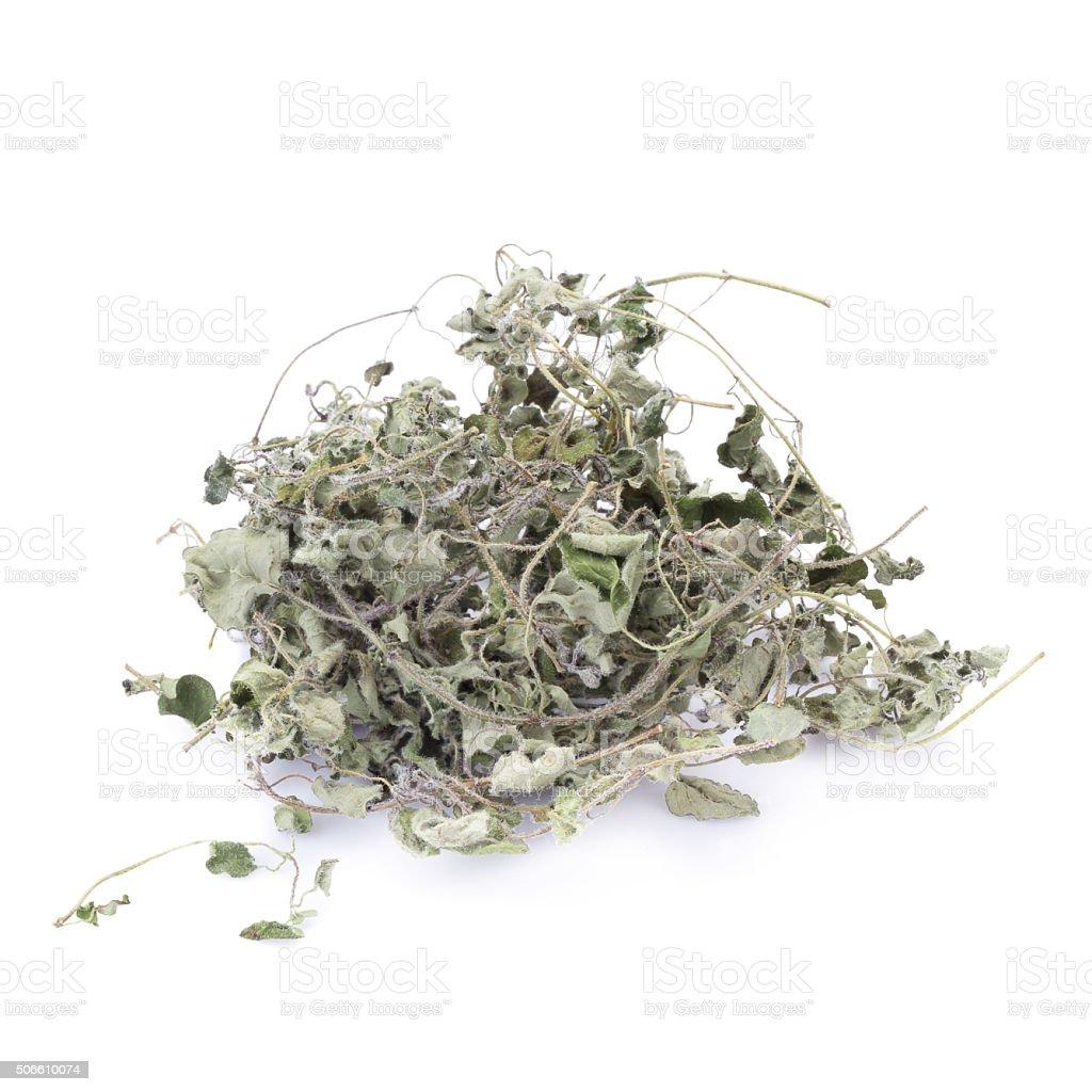 Dried oregano on white background stock photo