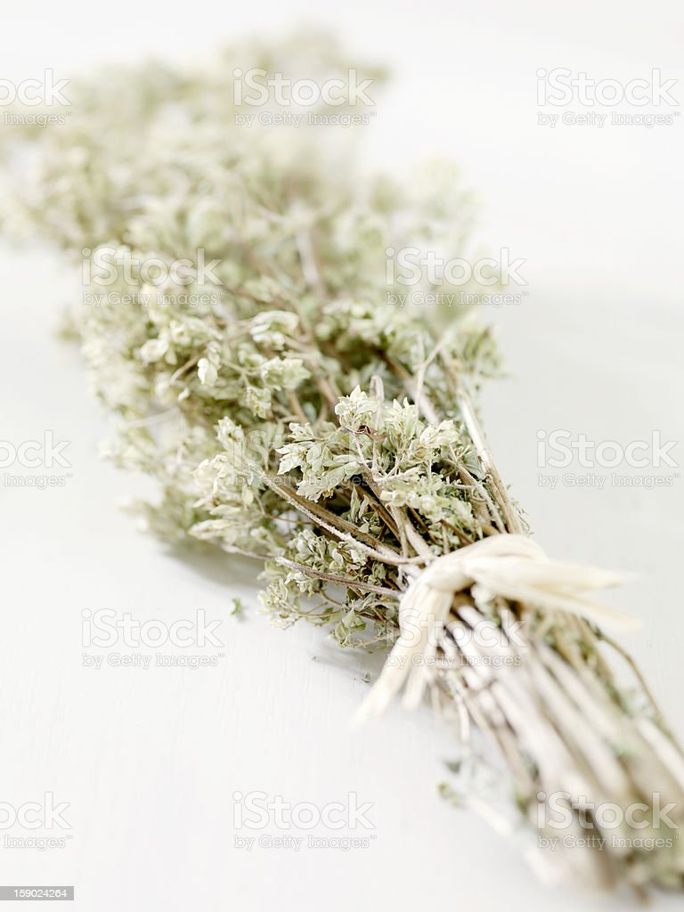 Dried Organic Oregano royalty-free stock photo