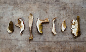 dried peppery bolete