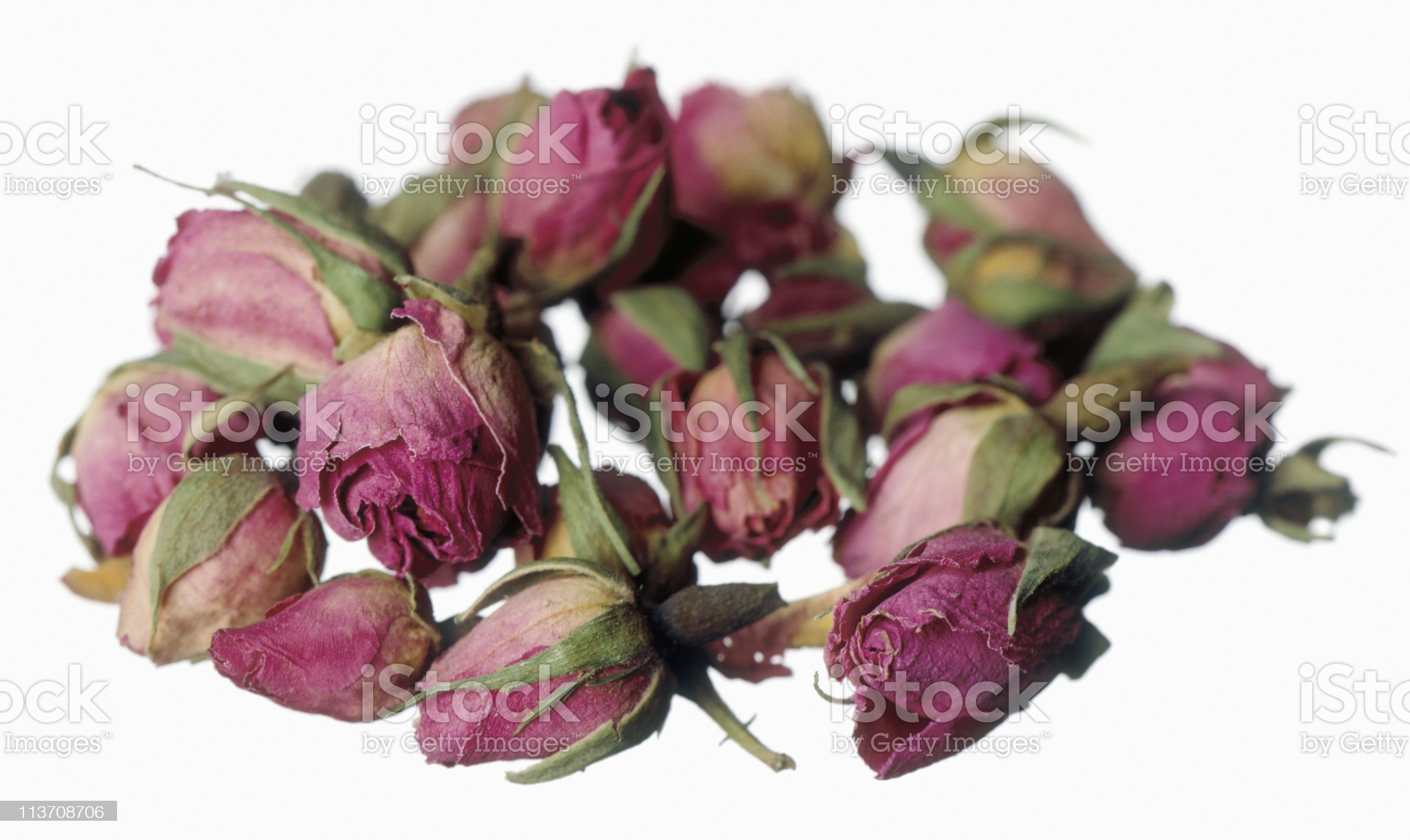 dried pink Rose buds cut out on white royalty-free stock photo