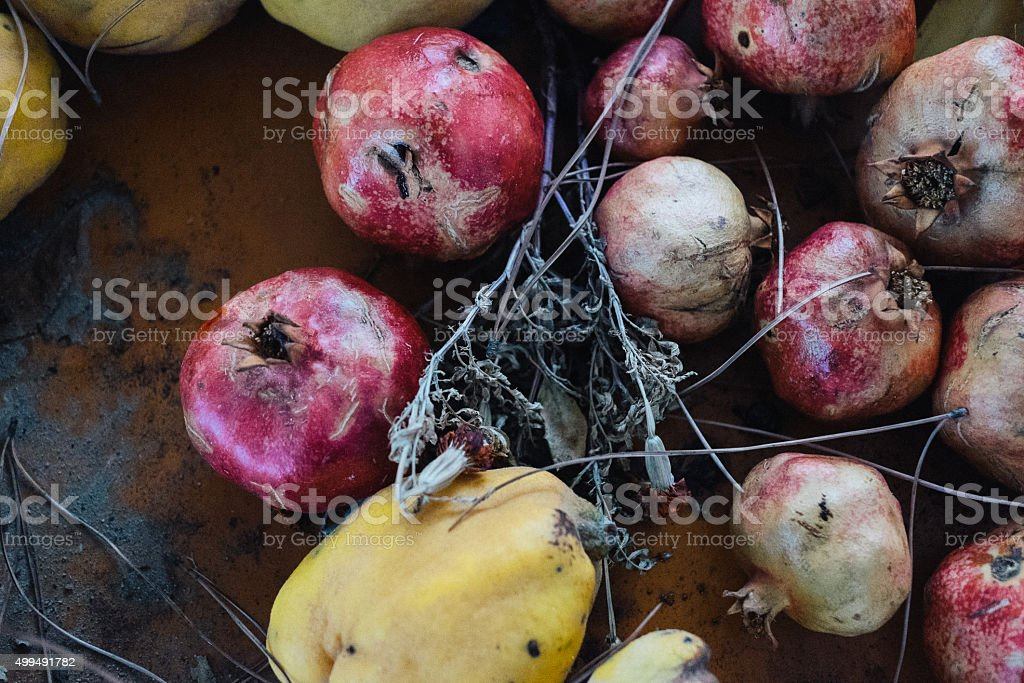 Dried pomegranates stock photo