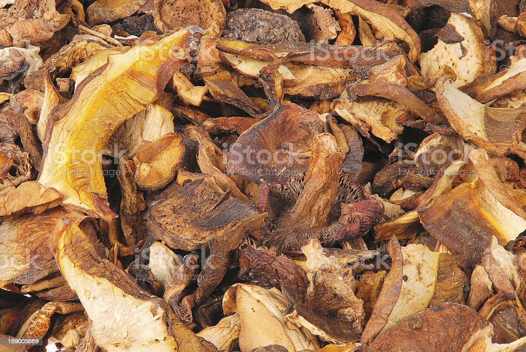 Dried porcini mushrooms royalty-free stock photo