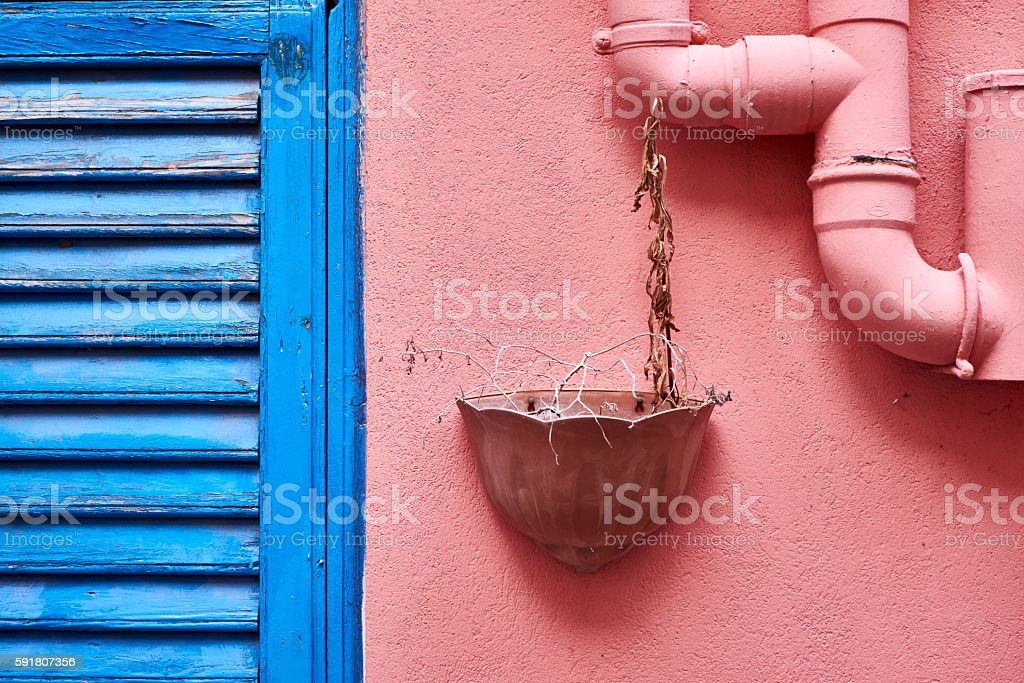 Dried potted houseplant stock photo