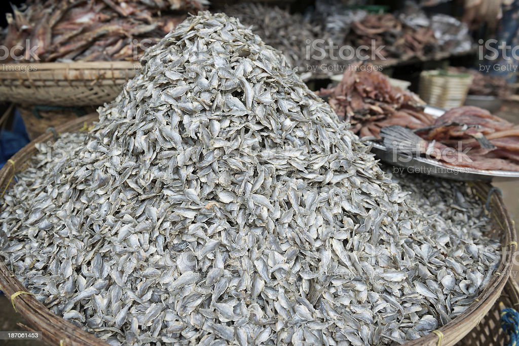 Dried Preserved Fish royalty-free stock photo