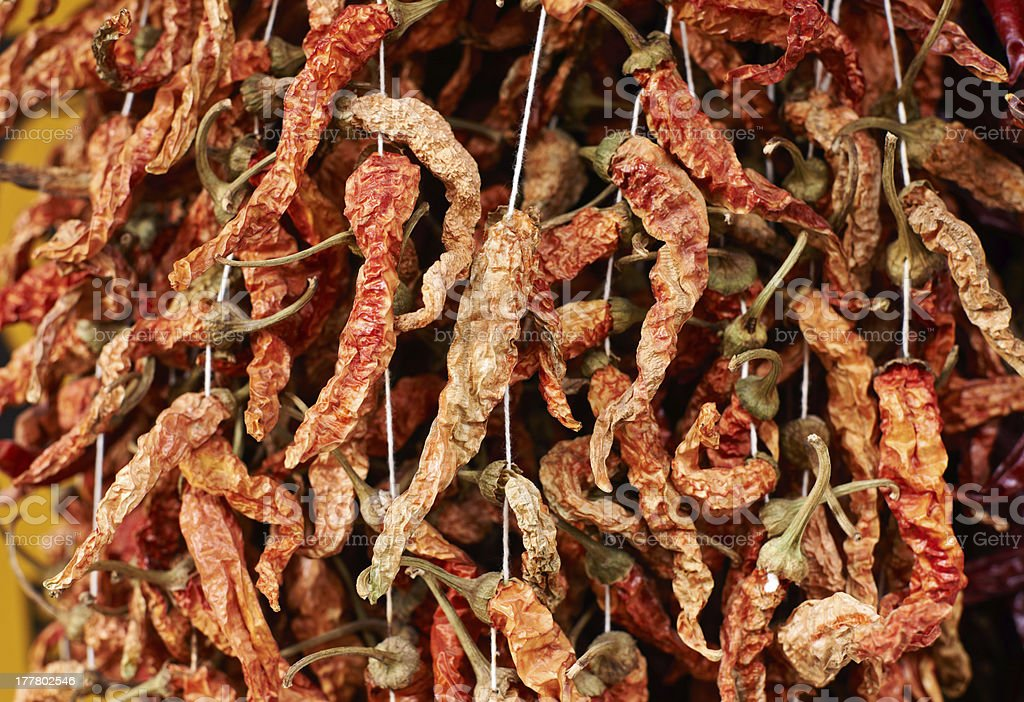 Dried red peppers royalty-free stock photo