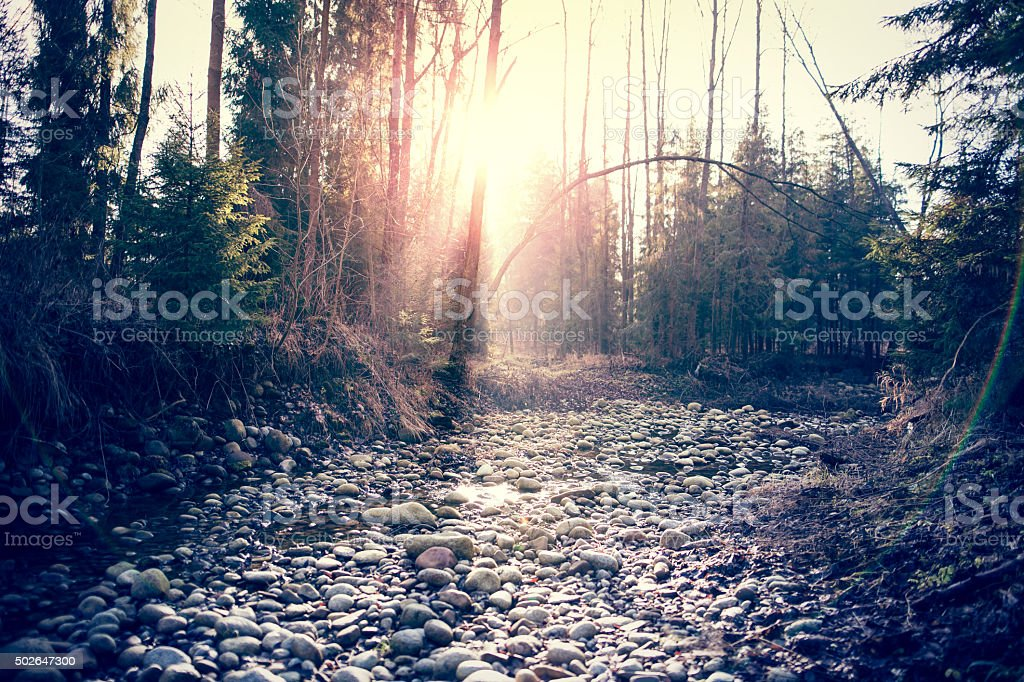 Dried river with pebbles stock photo