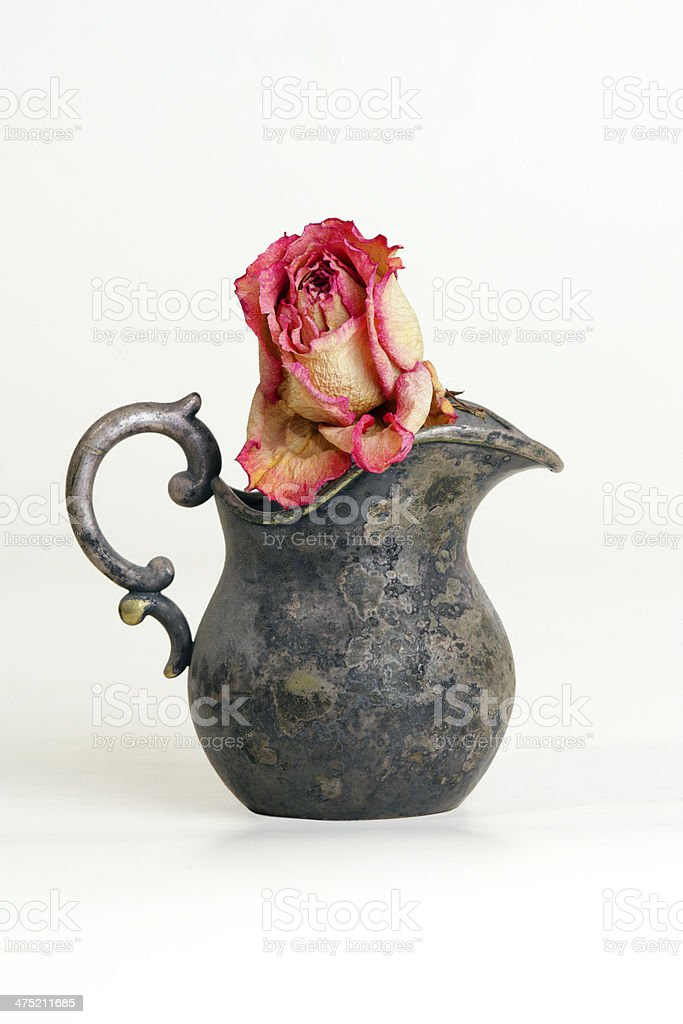 Dried rose in a vintage jug stock photo