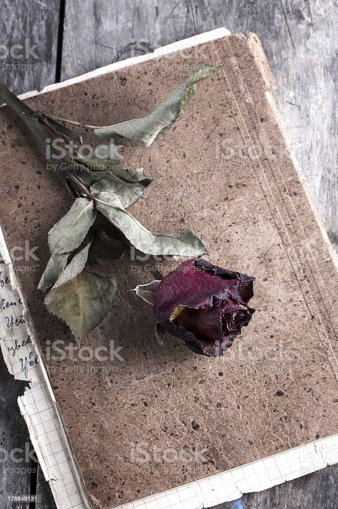dried rose on old notebook royalty-free stock photo