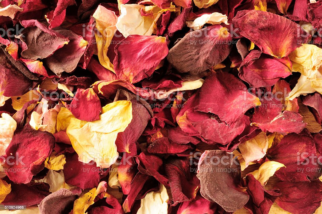 dried rose petals, background stock photo