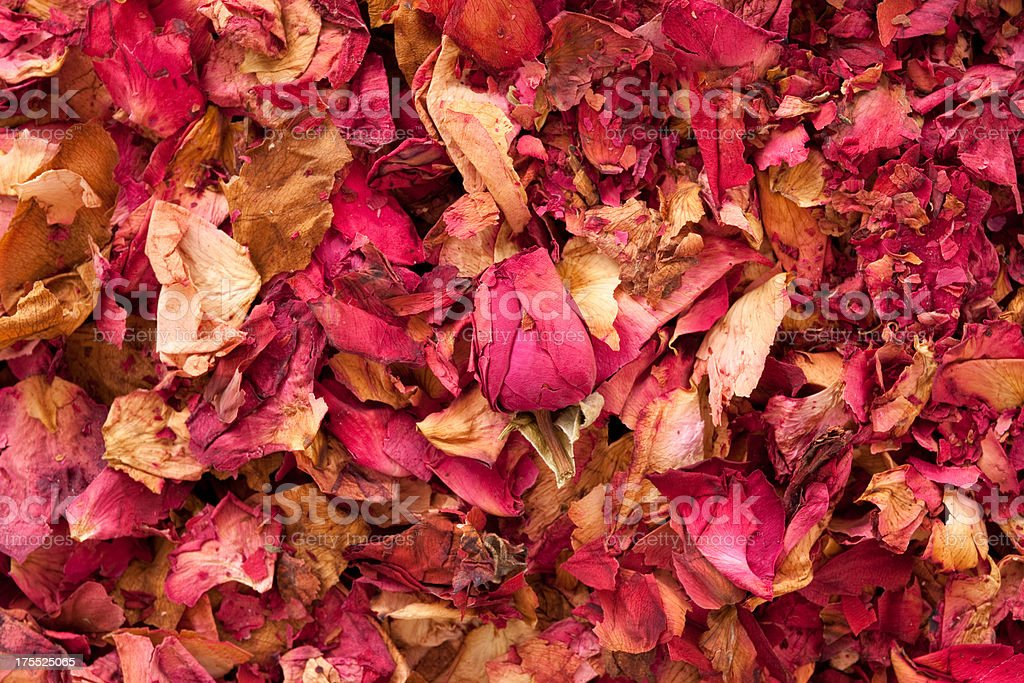 Dried rose petals for tea royalty-free stock photo