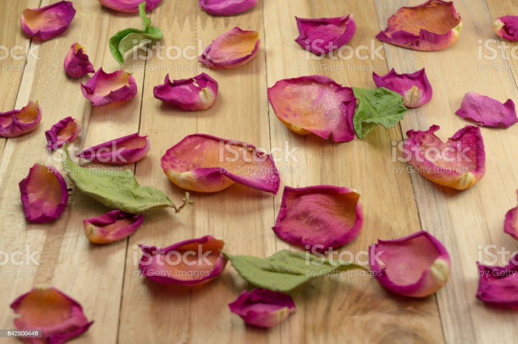 dried rose petals on wood ground stock photo
