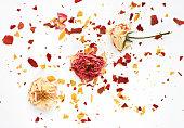 Dried rosebuds and crushed crisp petals background.