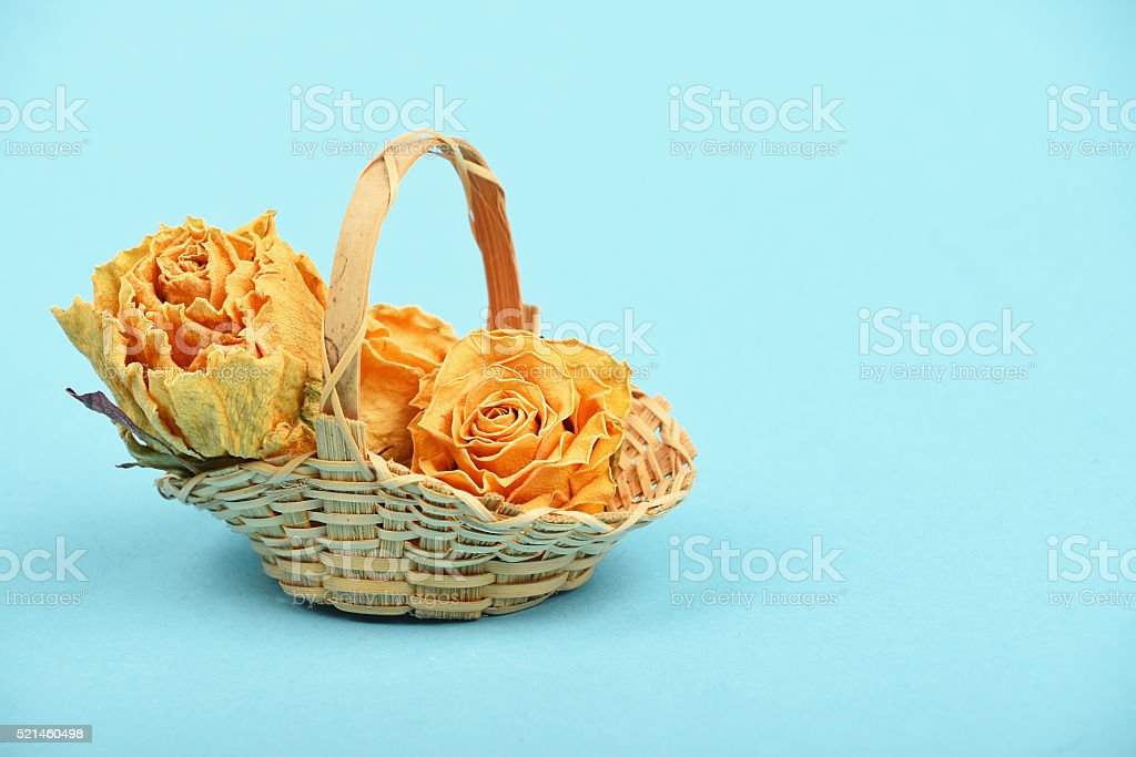 Dried roses in wicker basket over blue royalty-free stock photo