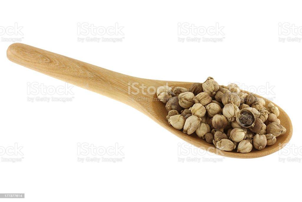 dried Round Siamese Cardamom/ Camphor Seed stock photo