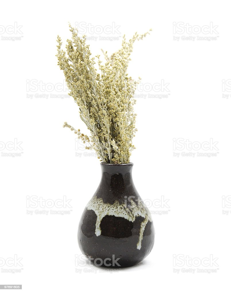 Dried Sage Herb in Vase royalty-free stock photo