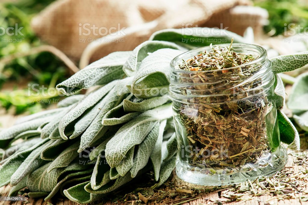 Dried sage in a glass jar, fresh sage stock photo