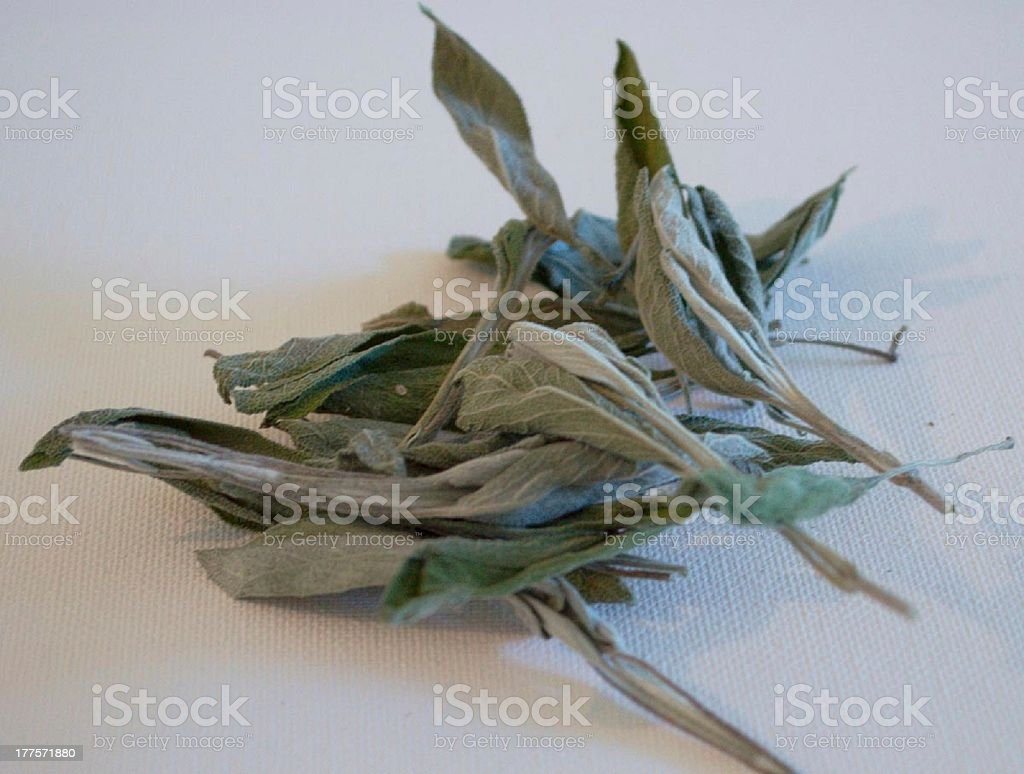 Dried sage leaves stock photo