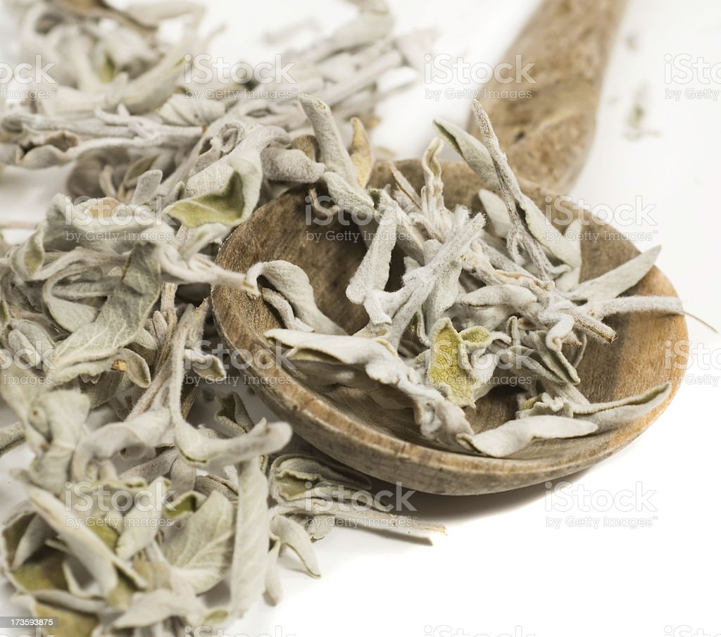 Dried sage royalty-free stock photo