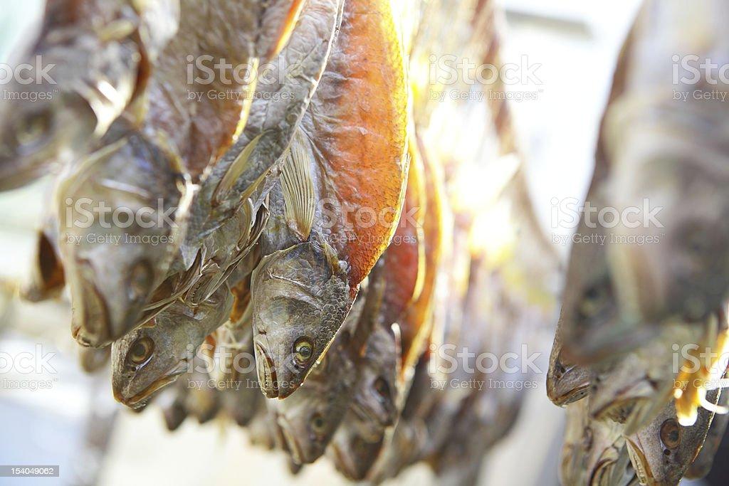 Dried salt Fish royalty-free stock photo