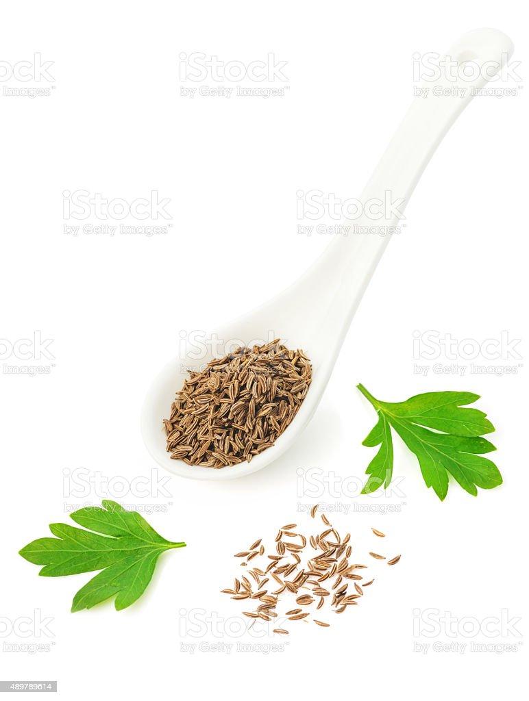 Dried seeds of cumin stock photo