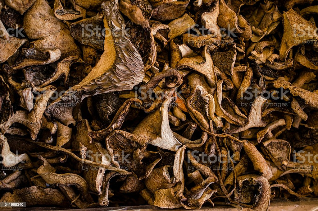 Dried shiitake stock photo