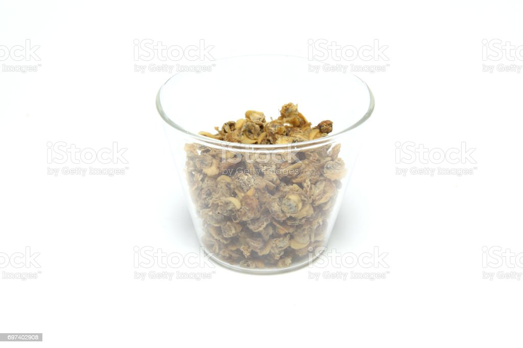 Dried shijimi clam in a white background stock photo