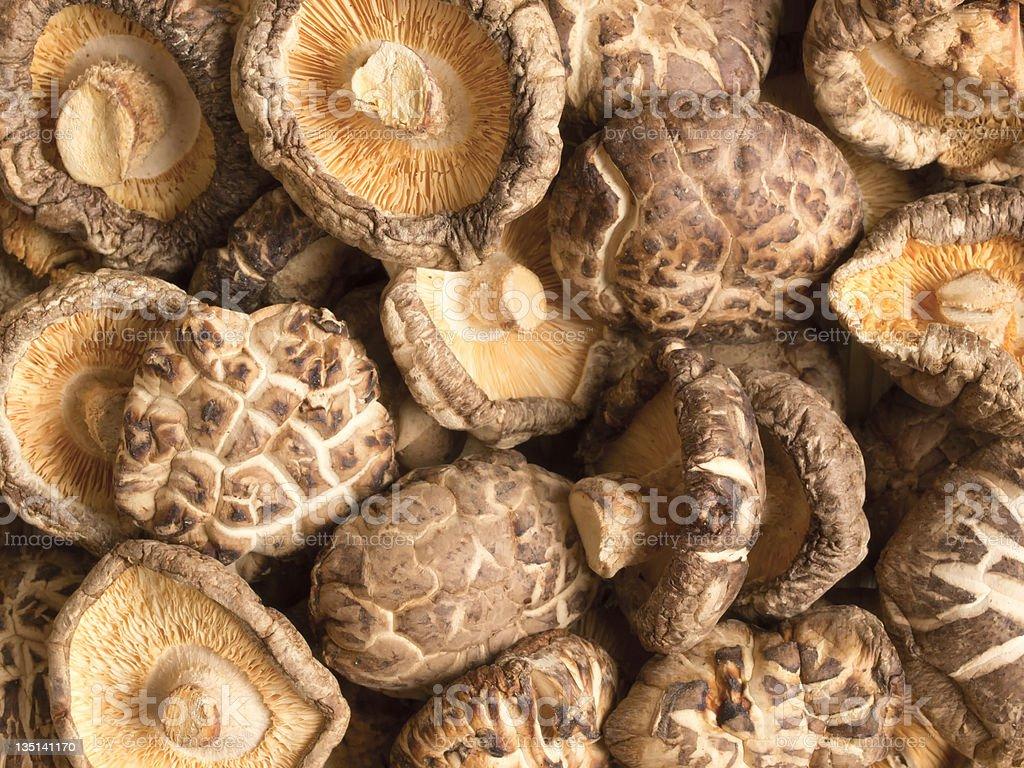dried shitake mushrooms stock photo