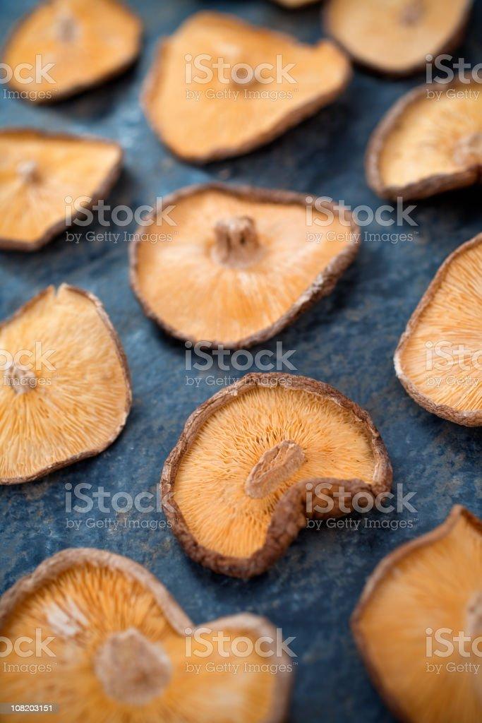 Dried Shitake stock photo