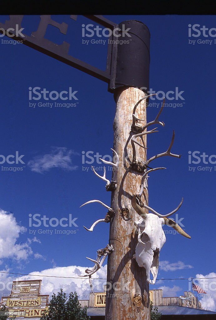 Dried Skeleton Antlers Post Tombstone Historic Town Cochise County Arizona stock photo