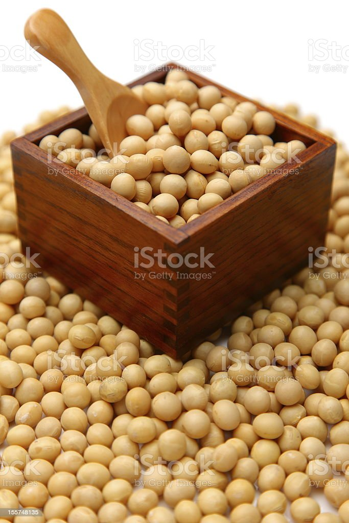 dried soybeans royalty-free stock photo