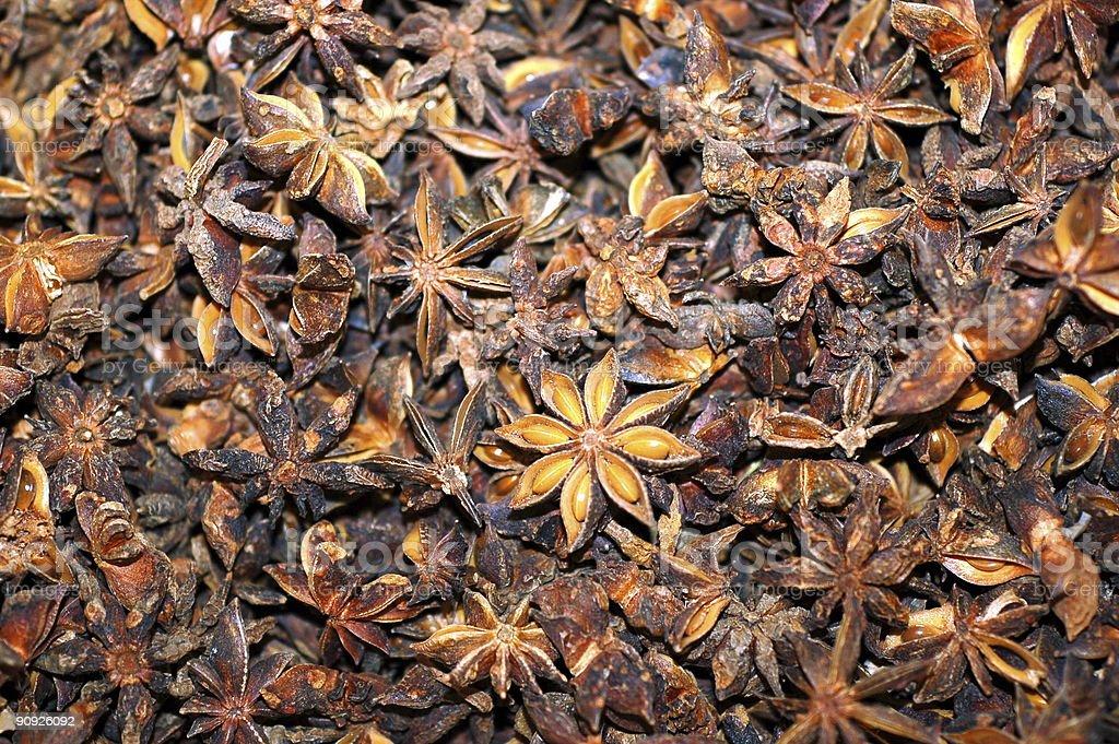 Dried star anis stock photo