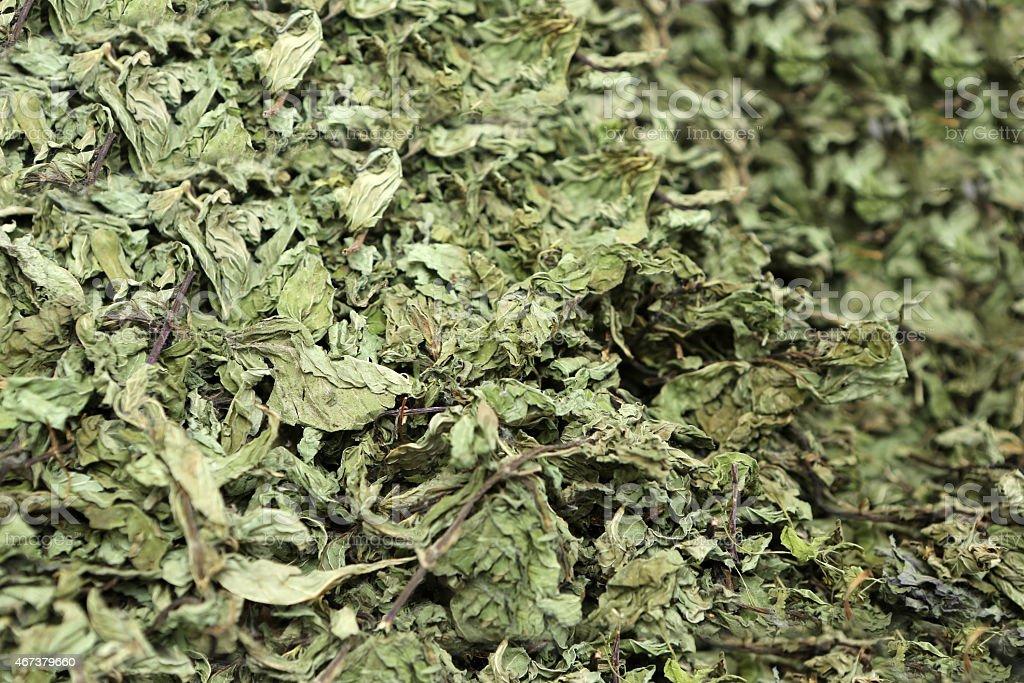 Dried Stevia Rebaudiana stock photo