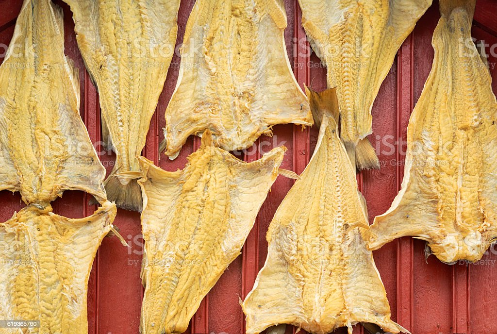 Dried Stockfishes Hanged on a Rorbu in Lofoten, Norway stock photo