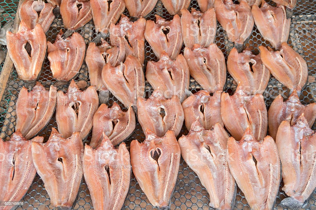 dried striped snakehead fish stock photo