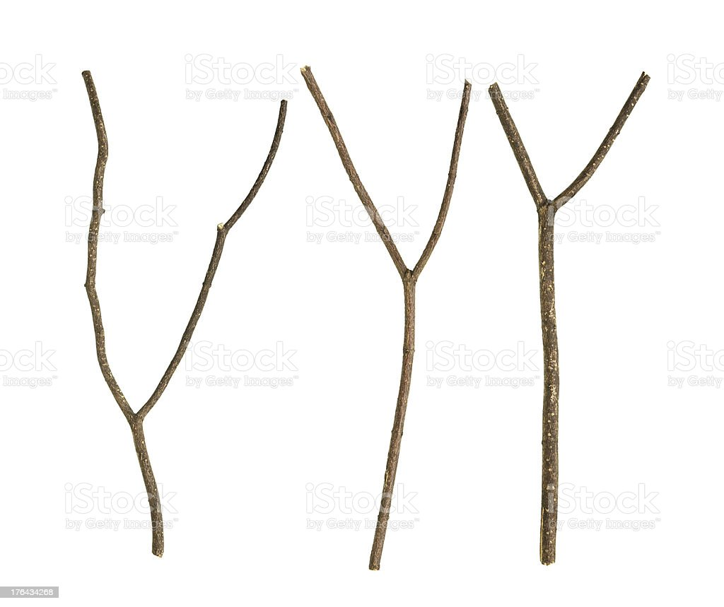 Dried tree branch royalty-free stock photo