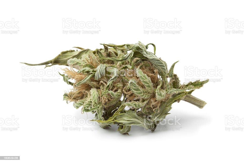 Dried up bud of marijuana on white background stock photo