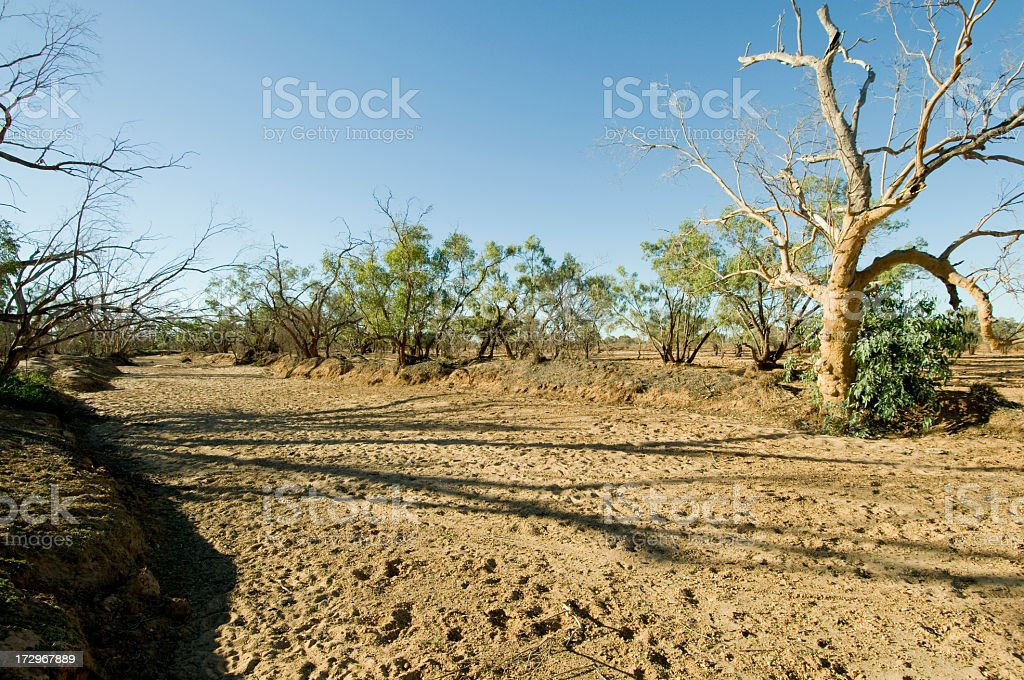 Dried Up Riverbed royalty-free stock photo