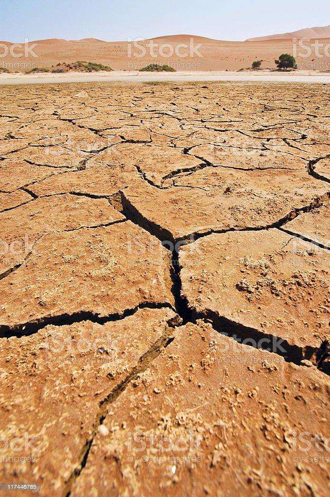Dried Waterhole stock photo