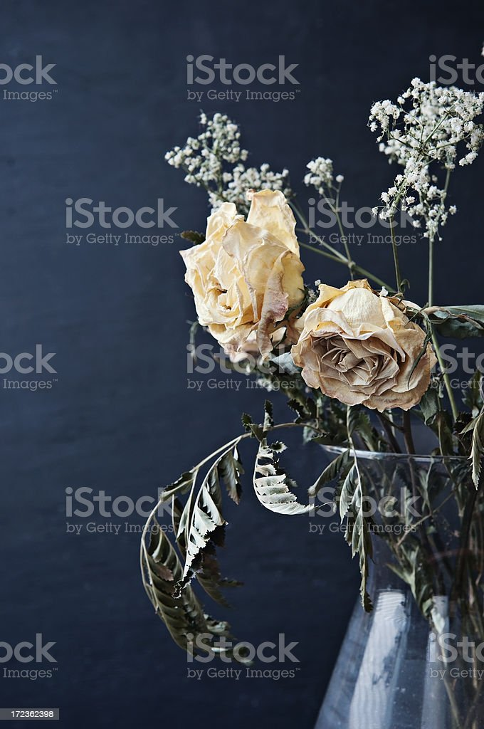 Dried Yellow Roses in a Vase royalty-free stock photo