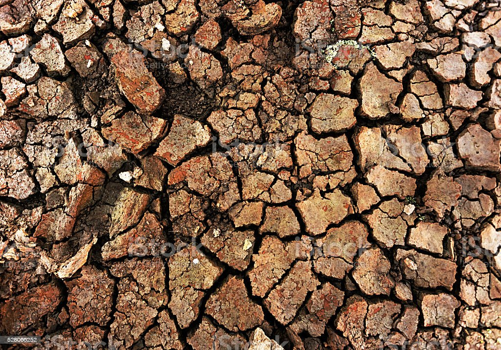 Dried-up river bed after long spell of drought stock photo