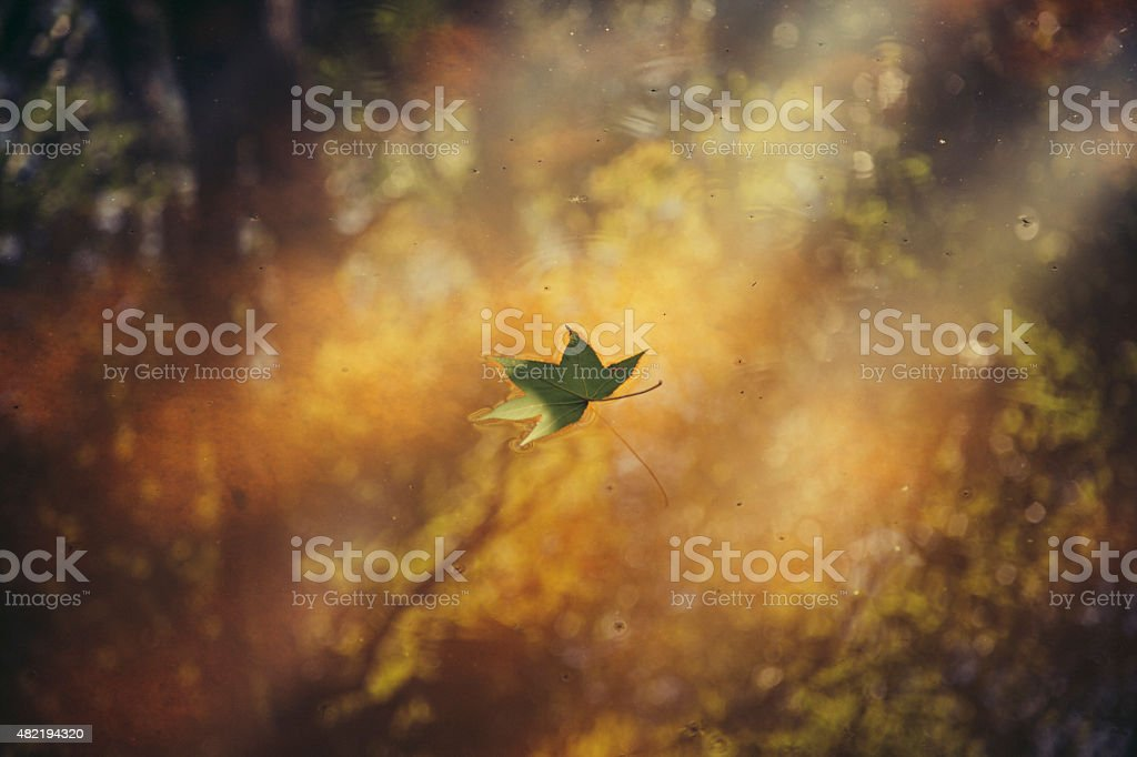 Drifting royalty-free stock photo