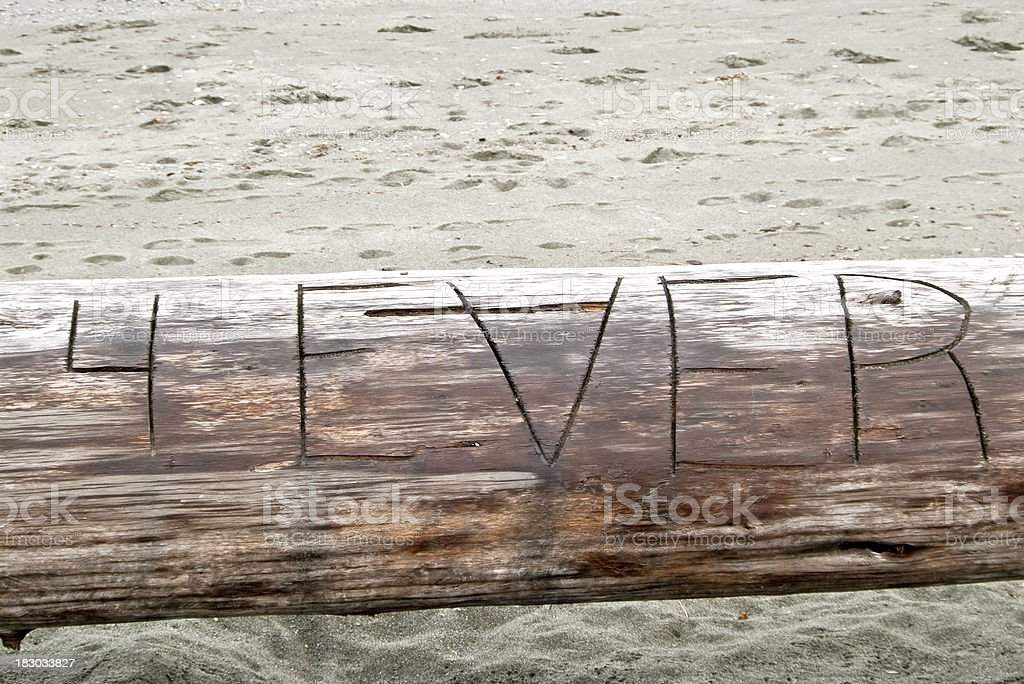 Driftwood 4Ever royalty-free stock photo