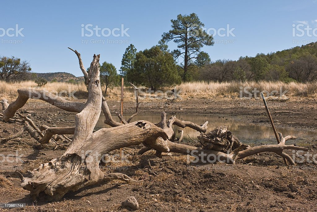 Driftwood and Cattle Water-Tank, Davis Mountains Texas. royalty-free stock photo
