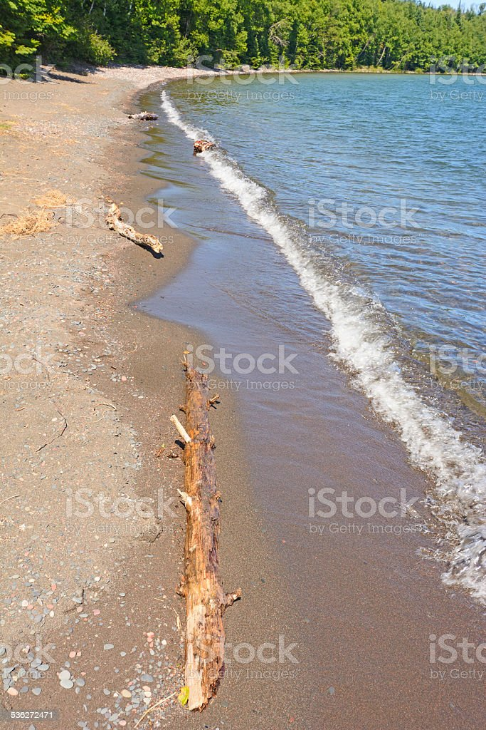 Driftwood and Waves on a remote beach stock photo