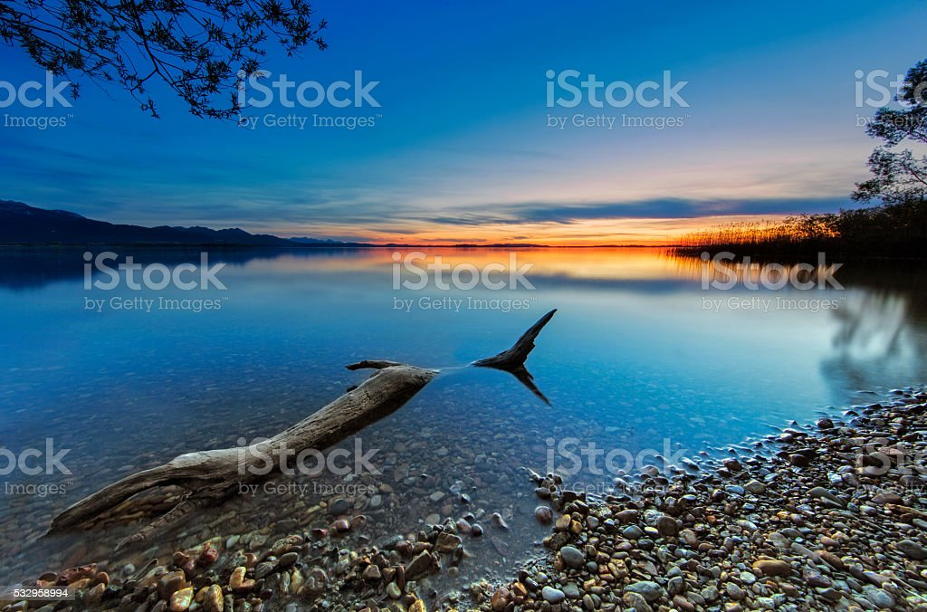Driftwood at Sunset  - lake Chiemsee stock photo